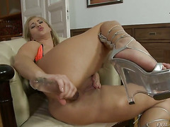 Leslie Taylor loves totally fuckable back swing of Linda Ray